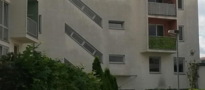Odstranění plísní, městských spadů Hlinsko